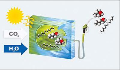Schematische Darstellung der Photofuel-Methode: In Photobioreaktoren werden Mikrobenzellen gezüchtet. Die Zellen wandeln Solarenergie, Wasser und Kohlenstoffdioxid zu motorfähigen Kraftstoffen um. ©Klaus Lenz, SYNCOM
