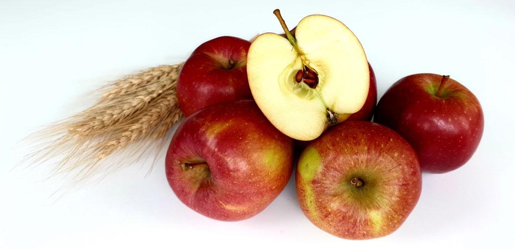 Symbolbild Äpfel