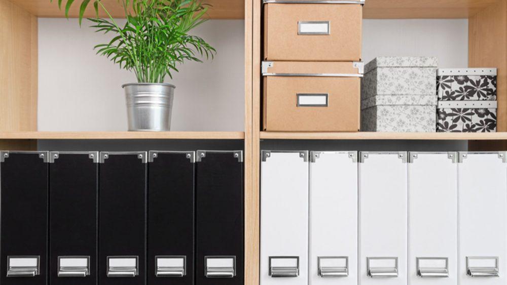 Regale mit Aufbewahrungsboxen, schwarzen und weißen Ordnern und grüner Pflanze.